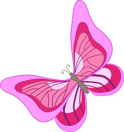 Una farfalla rosa ora il terribile appennino - Immagini di farfalle a colori ...
