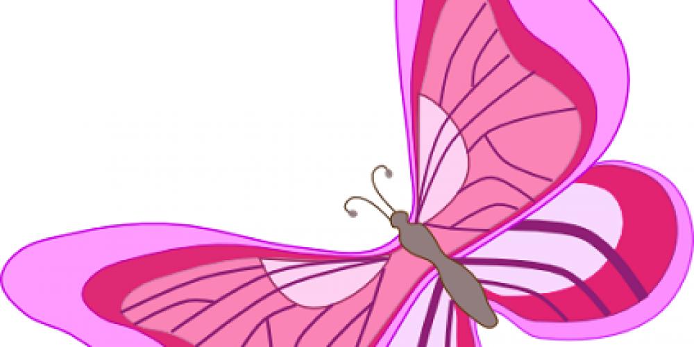 La mariposa en rosa